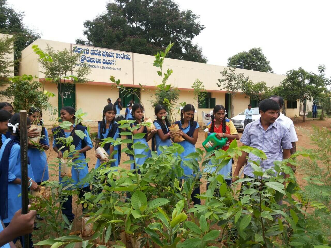 Tree Plantation – Kadugodi School