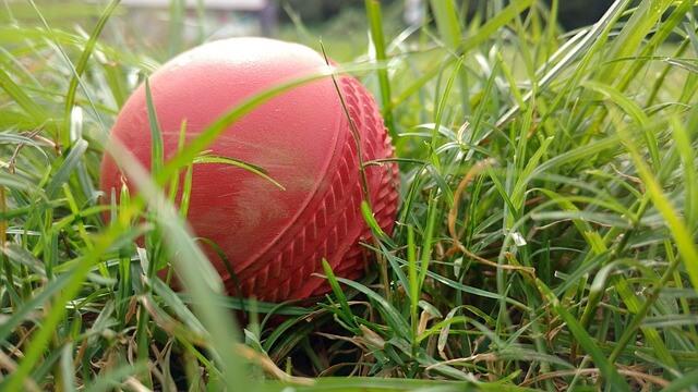 Gully Cricket Match