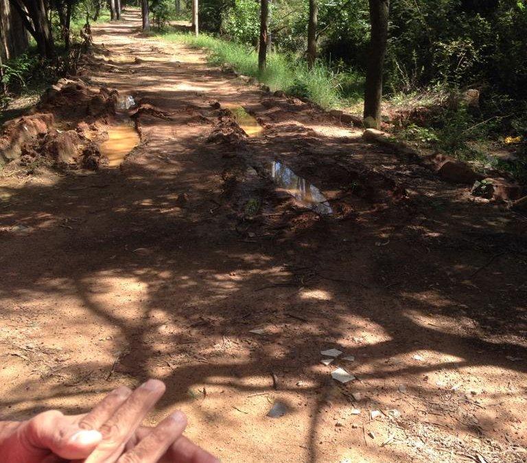 Visit to biodiversity park project